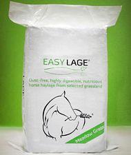 Easylage Meadow Grass foraggio anallergico, privo di polvere per tutti i cavalli, fattrici e puledri