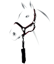 Cavezza Equestro A Series con doppia regolazione e bordatura a contrasto con fibbie scure