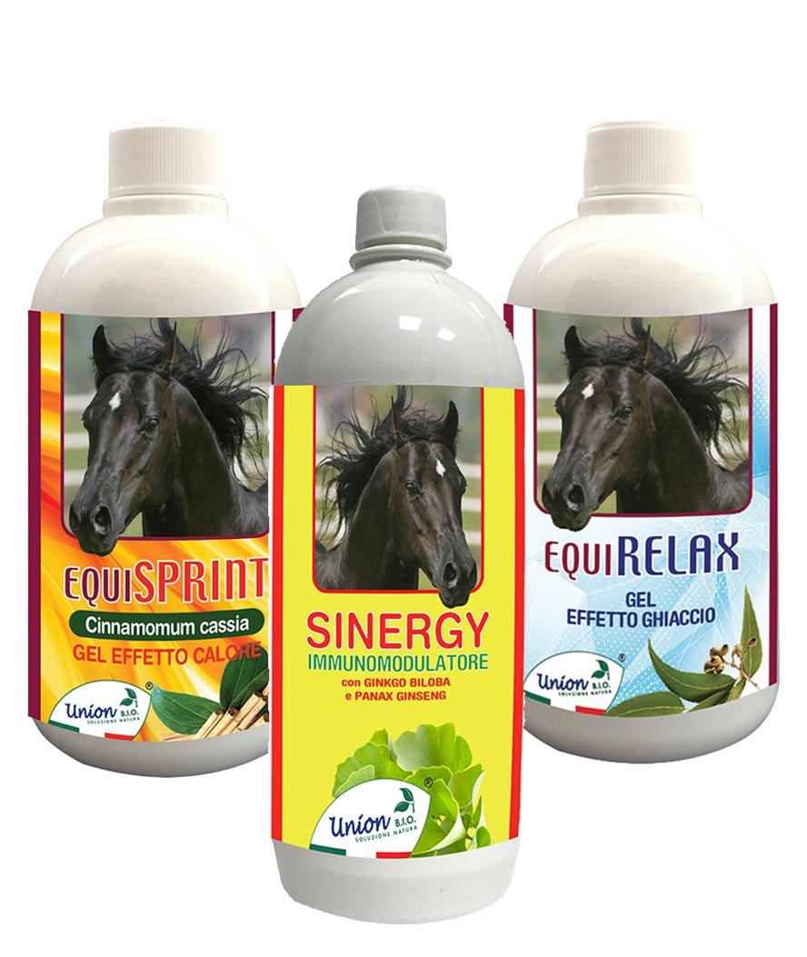 ENERGY SET AND OPTIMIZATION HORSE PERFORMANCE  equisprint + equirelax + sinergy